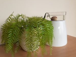 Watering Plant With Matting