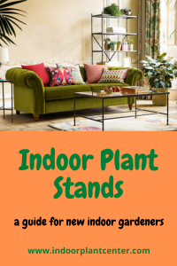 Indoor Plant Stands - A guide for new indoor gardeners